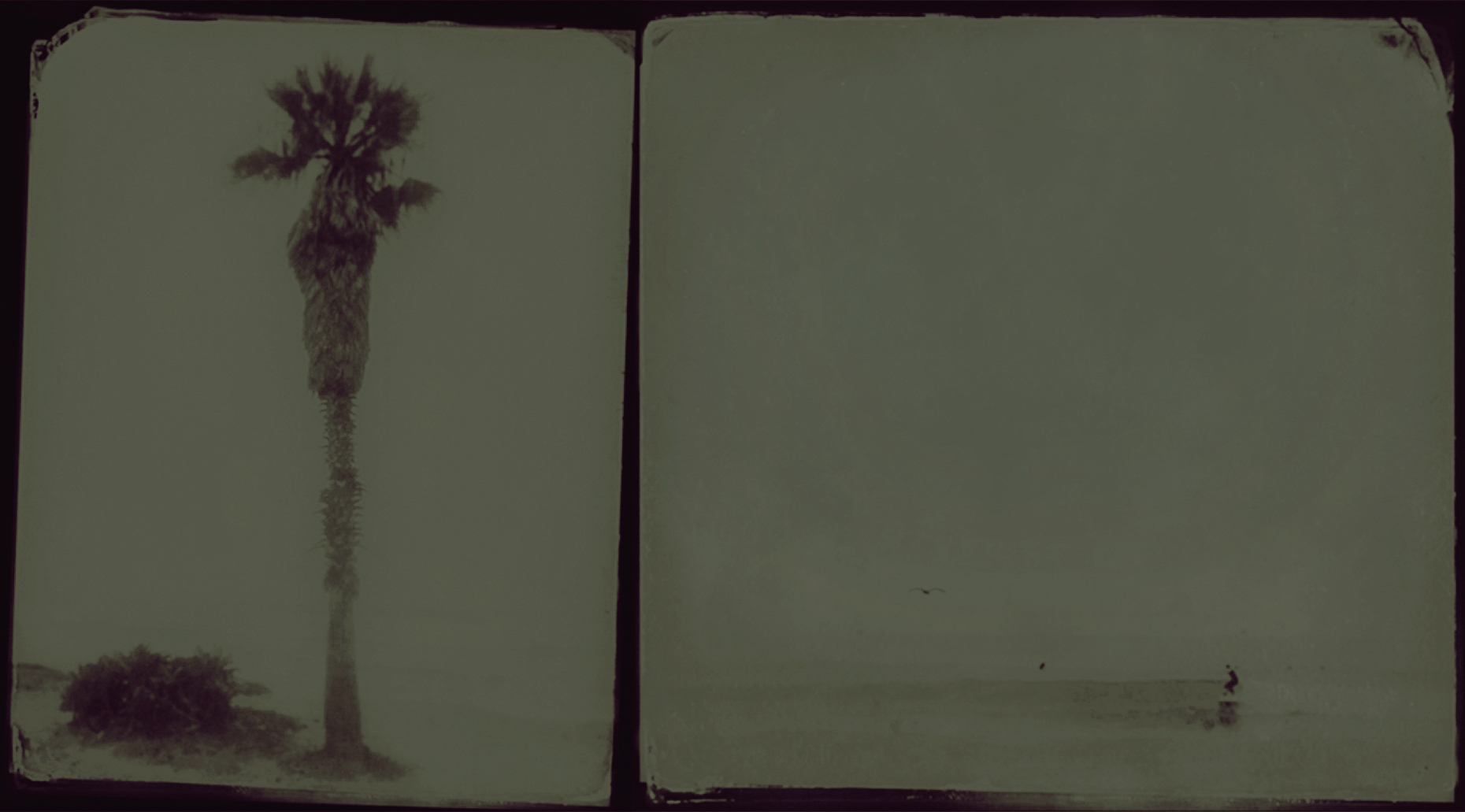 FinStudy: Inside/Outside (wet-plate sketch)