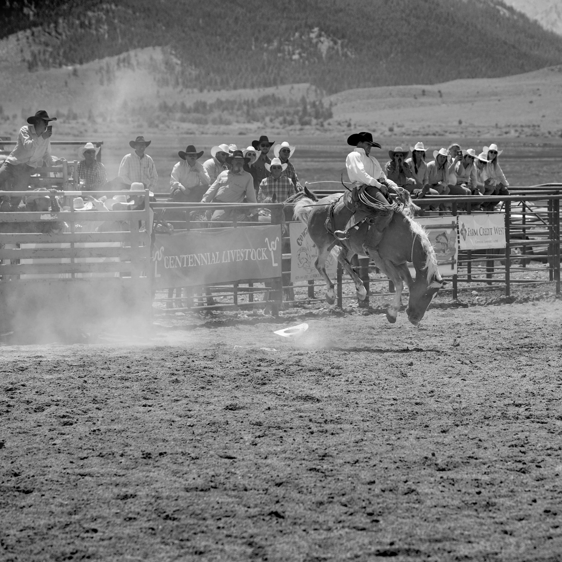 Roadtripping_BridgeportRodeo_BroncRider09_Action_Personal_Retouched_Web