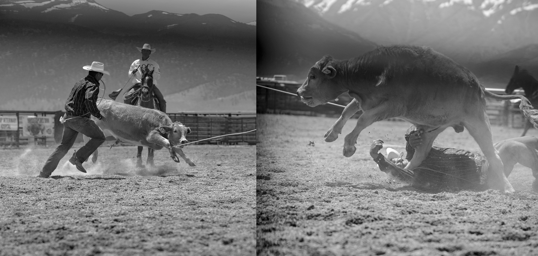 Roadtripping_BridgeportRodeo_Diptych_IndCalfWrestling_Action_Personal_Retouched_Web
